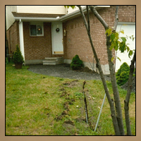 Landscaping Before Image