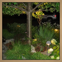 Landscaping With Light Night Image