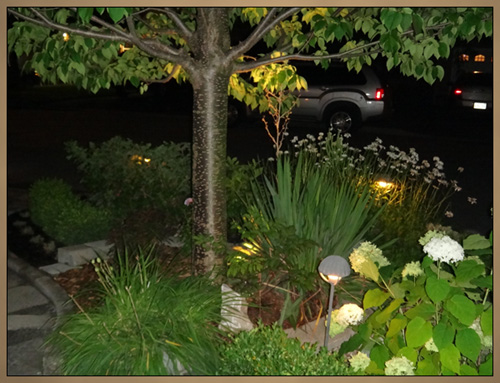 Custom Landscaping With Lighting Night Photo